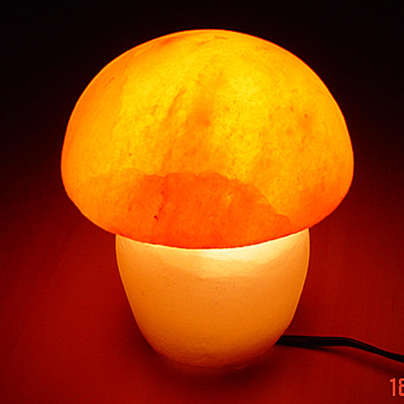Pink Himalayan Salt Mushroom Lamp